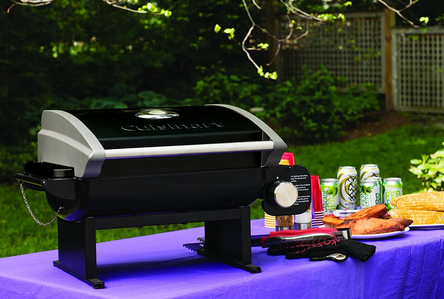 best table top gas grills